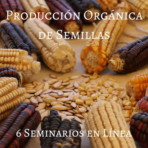 Producción Orgánica de Semillas (1)